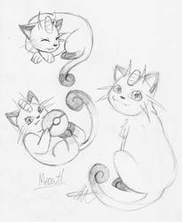 Meowth sketches by Drayna