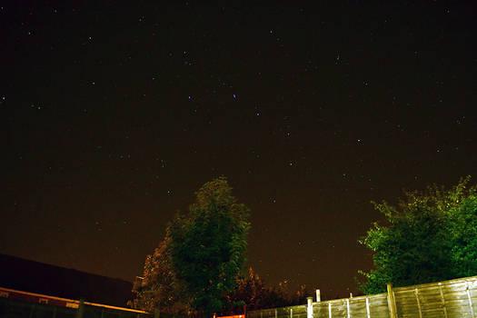 Garden Stars 03