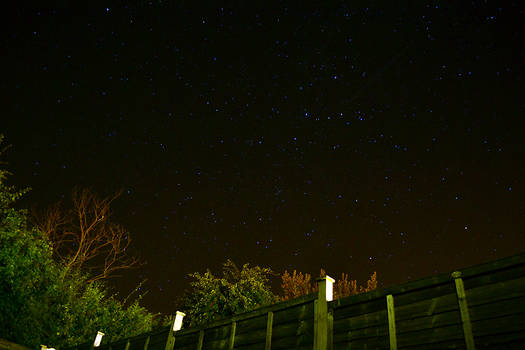 Garden Stars 04
