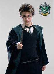 Slytherin Harry? 2