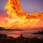 Sunbound Phoenix