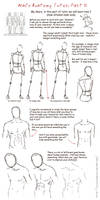 male anatomy tutor partII by Lenap