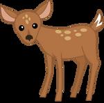 Mlp EqG 4 Resources (deer) vector