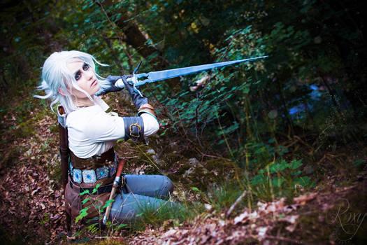 The Witcher Wild Hunt - Ciri III