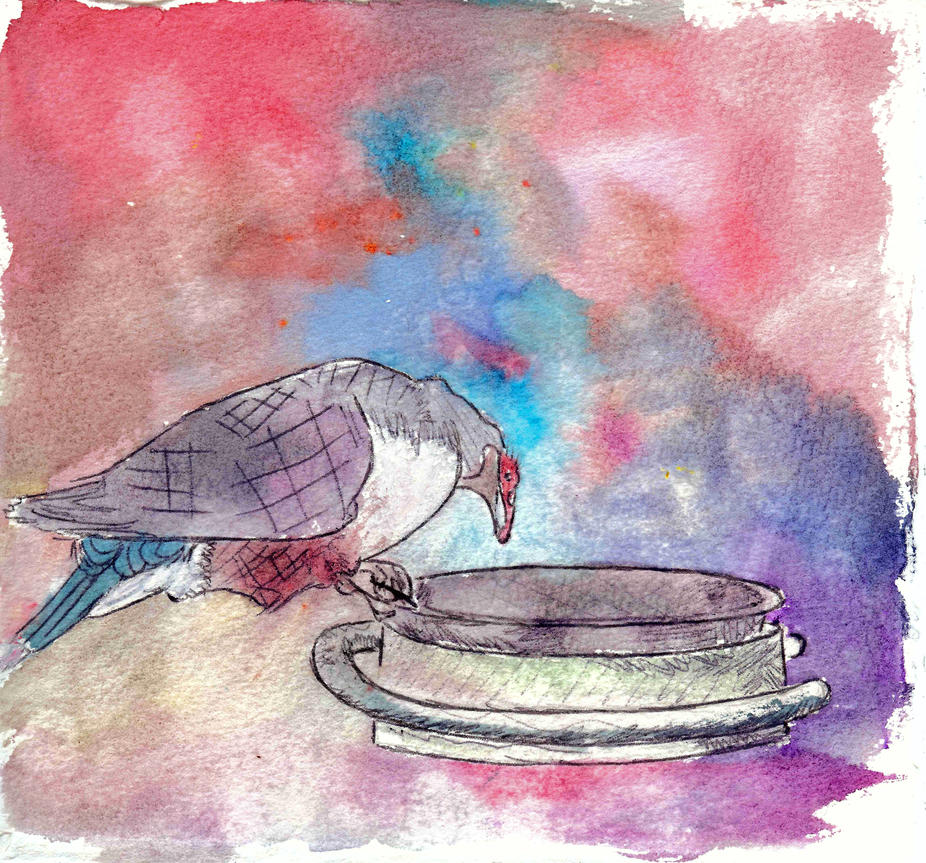 Bird and the Dish by Philliewig