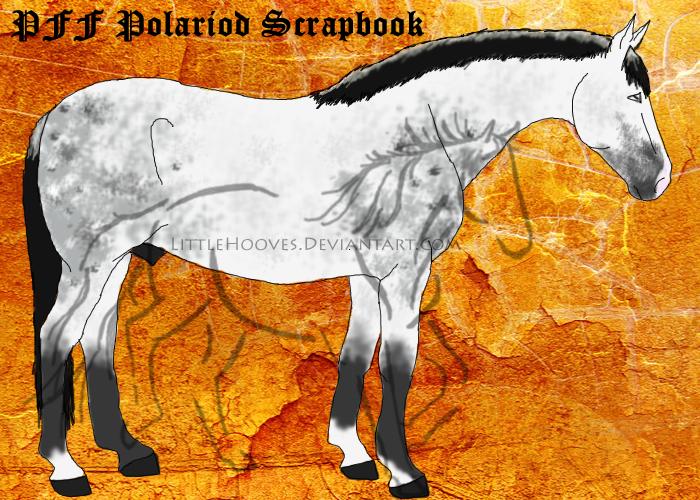 PFF Polaroid Scrapbook by LittleHooves