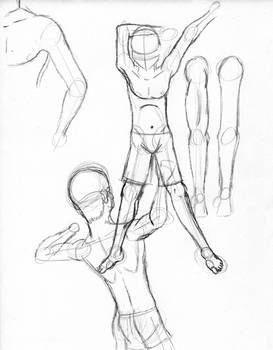Arm and Shoulder Study
