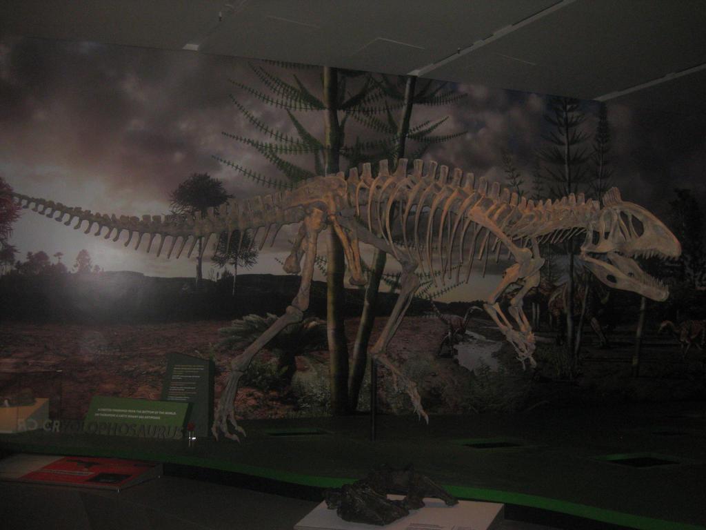 the skeleton of cryolophosaurus ellioti by darcygagnon on