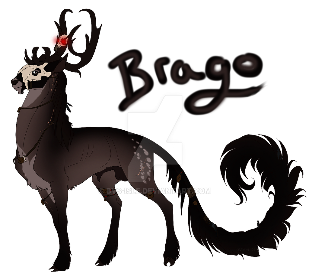 BVS-Isle's Profile Picture