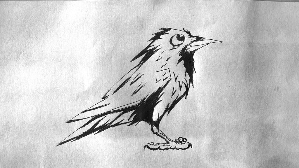 how to draw a raven in flight
