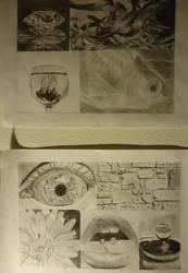 Picture Copies