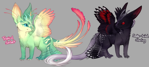 Teacup Dragon Auction! Tails 'n Speckles! [CLOSED] by Aeoptera
