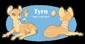 Evoloon - Tyro