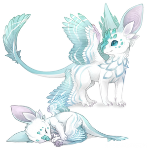 Custom: Echeveria