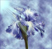 A Flower... by sinslave