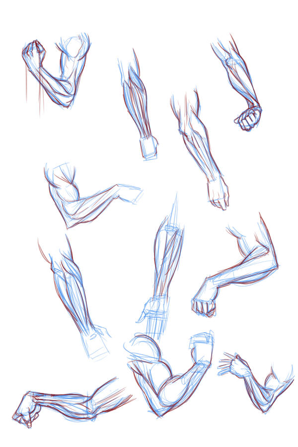 Forearm Sketches by ffnb