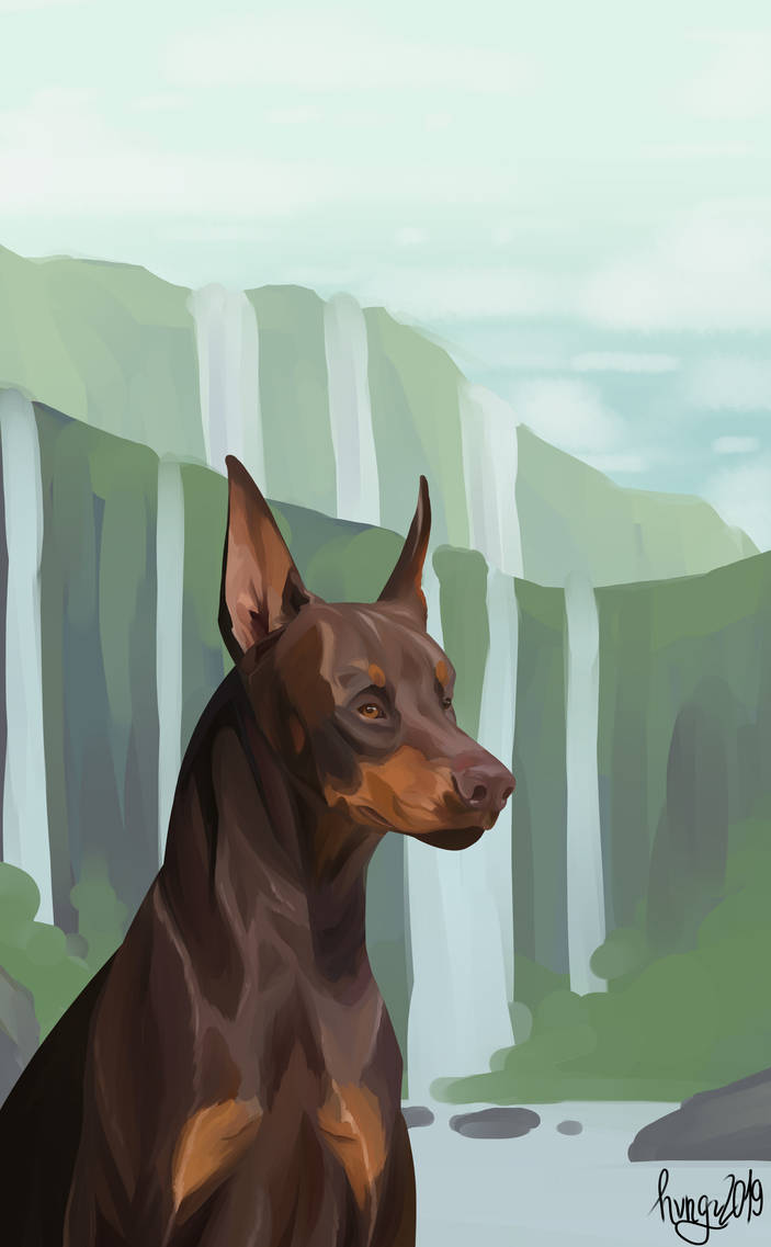 Doberman painting