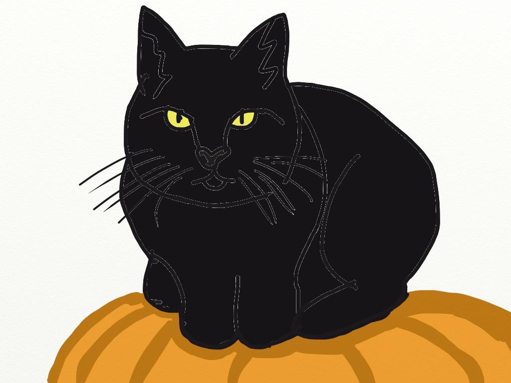 Black Cat on Pumpkin by ThereGoesTheNGHBHD