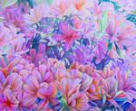 Flowers by skshizuka
