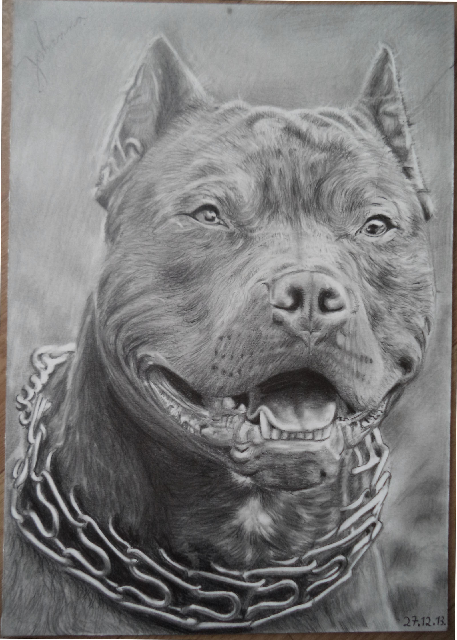Drawing of a pitbull by valyanna8361 on deviantart - Dessin de pitbull ...