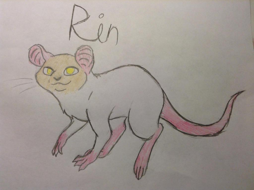 Rin Ref by icepaw4900