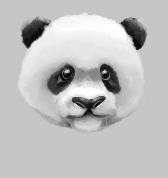 Panda Head Tumblr