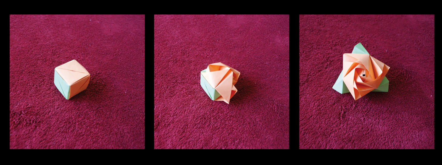 Origami Rose Cube By Kleinalaine On Deviantart