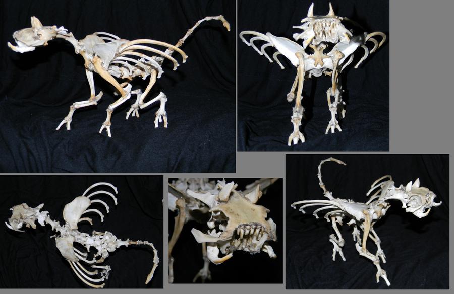 Bone Monster by Koeskull