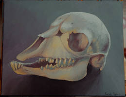 Goat Skull Still Life Painting by Koeskull