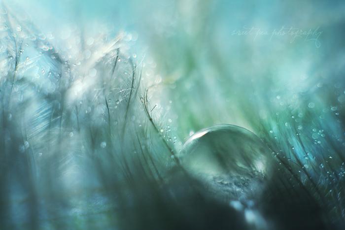 Playground Underwater by SweetPeaPhototc