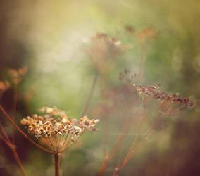 Beauty isn't dead by SweetPeaPhototc