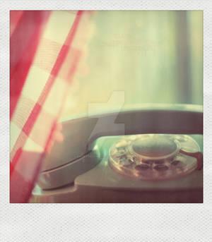 Mint Polaroid
