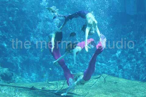 Mermaids by themermaidstudio