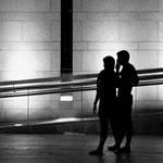 urban nocturnal