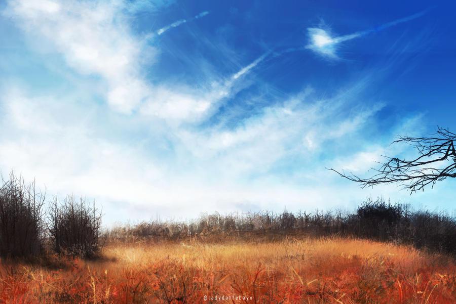 Fields by LadyDattebayo