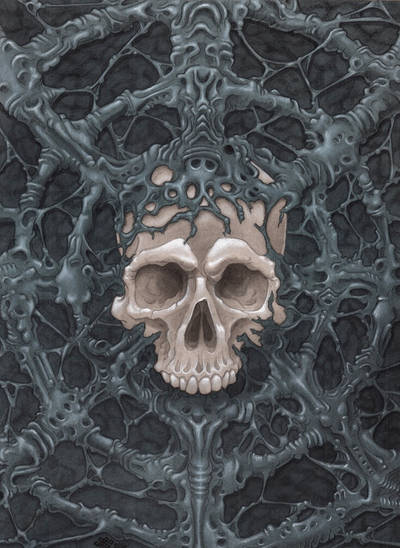 Skull web by Alentrix