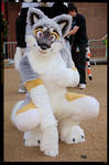 My fursuit - Farley