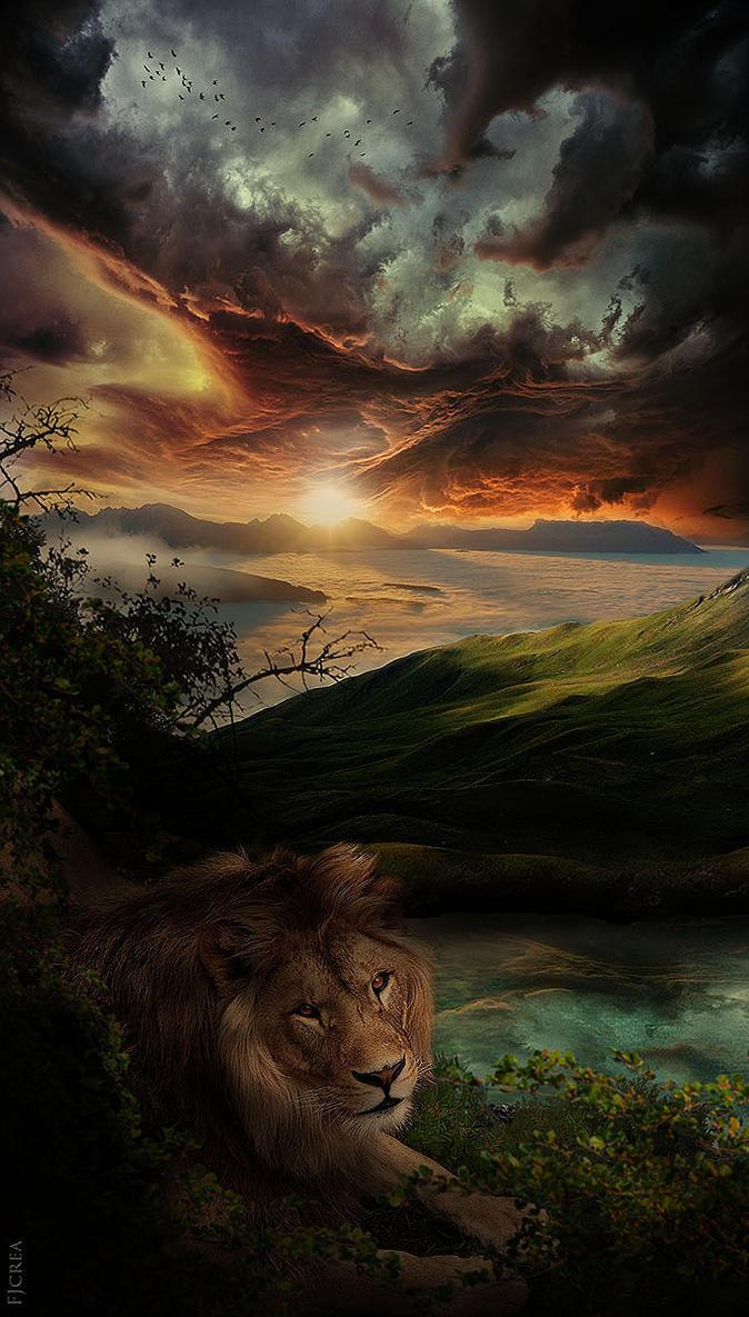 SUNSET by EBENEWOOD