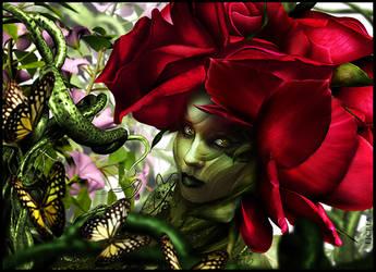 ROSE by EBENEWOOD