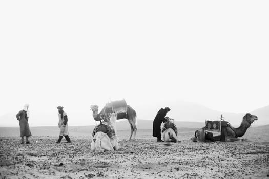 Morocco - Zagora Desert