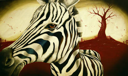 Zebra Dreams.. by sacroiliac