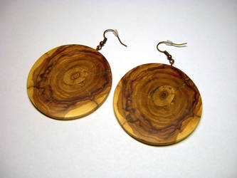 Wooden earrings 2 by bengo-matus