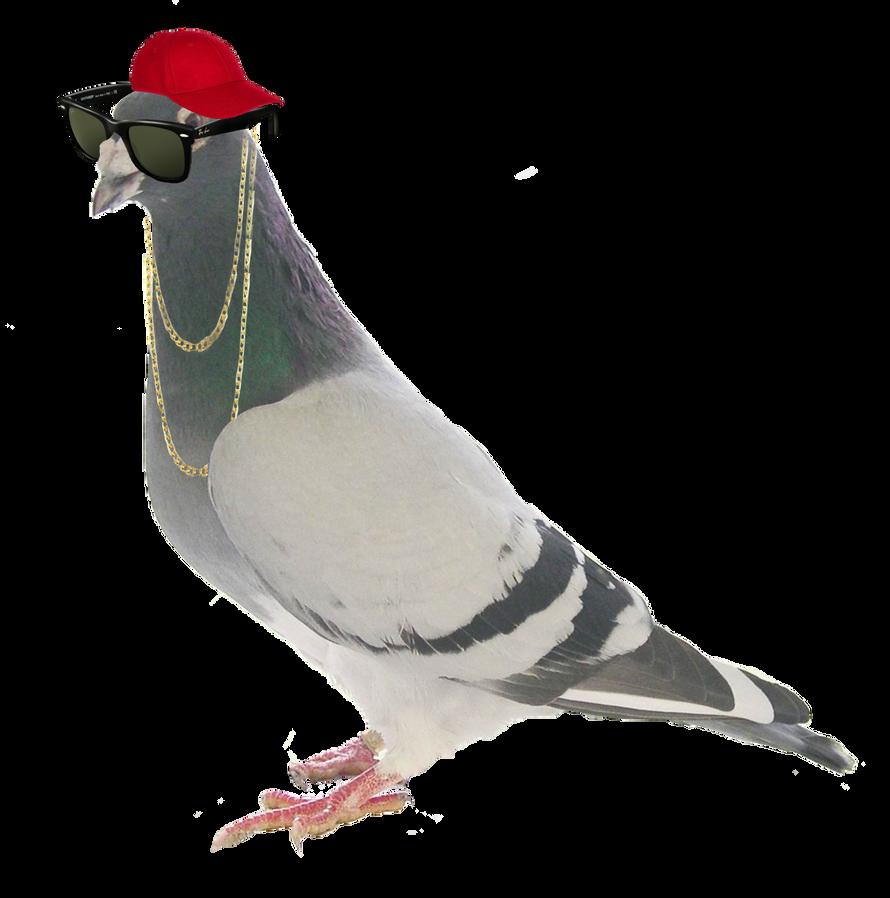 Merry Battleon Christmas! Cool_pigeon_by_radical_yuris-d5weoam