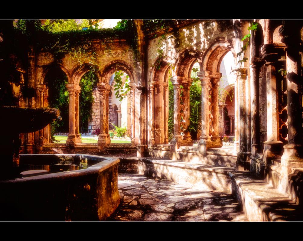 Abbaye de Valmagne 7 by calimer00