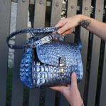 Dragon scales bag