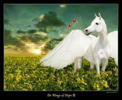 On Wings of Hope II