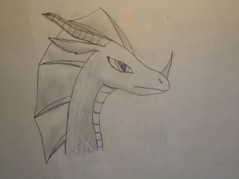 Summer dragon sketch