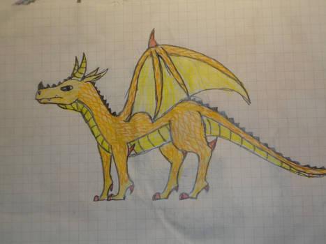 Amarida golden dragon
