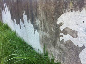 Reverse Graffiti - Godzilla2