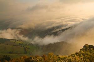 Autumn Serenade by ErwinStreit